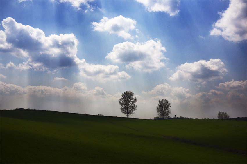 푸른 들판위로 햇살이 내리쬐는 모습