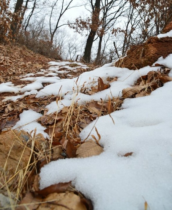 눈이 쌓인 산길