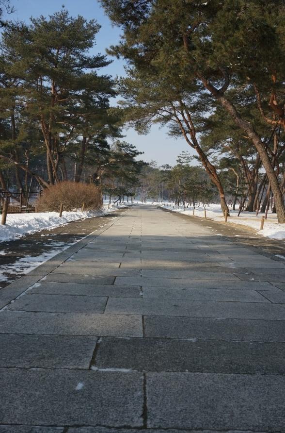 홍살문에서 정자각까지 이어진 길