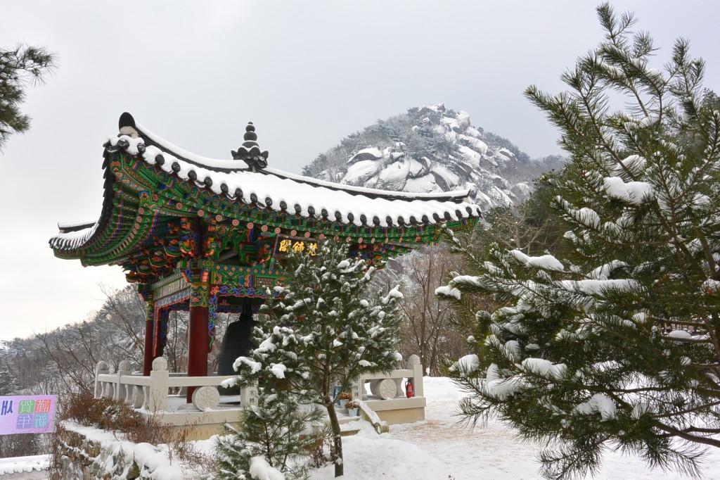 눈이 쌓여 있는 호암사 사찰과 그 앞의 나무의 모습