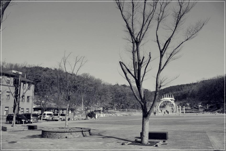 흑백풍경의 모습