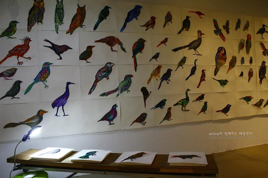 벽면에 붙어 있는 수많은 새그림들