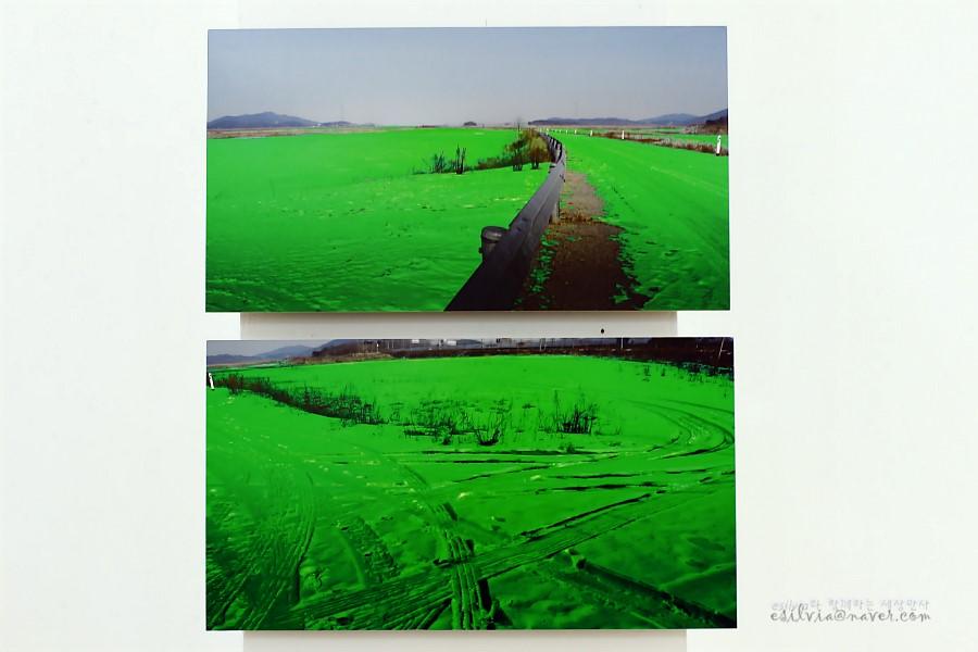 초록색 눈으로 뒤덮혀 있는 듯한 작품의 모습