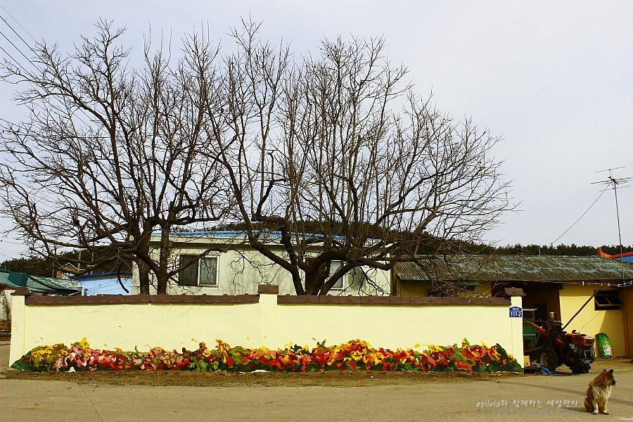 꽃밭이 그려져 있는 집과 앙상한 나무의 모습
