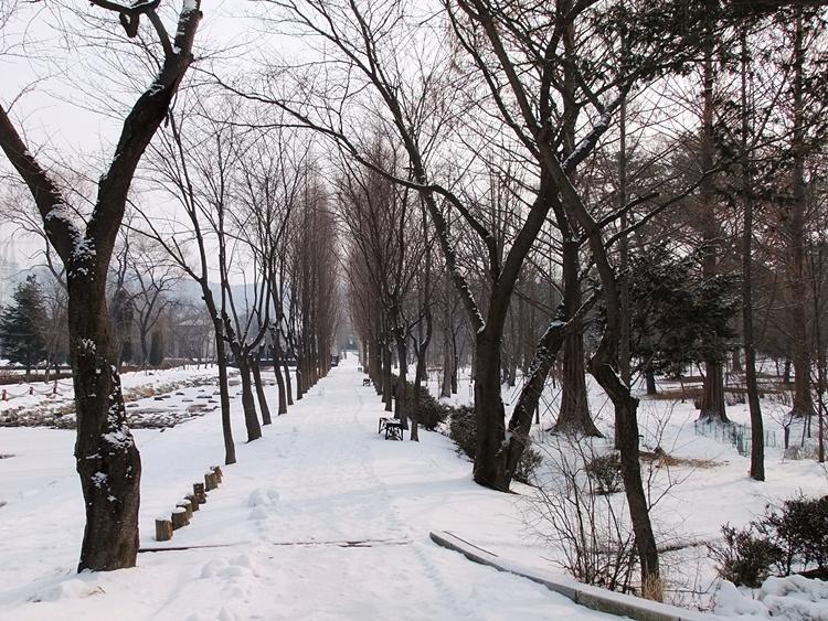 눈이 쌓인 산책로