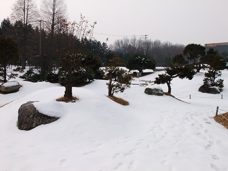눈이 쌓인 식물원
