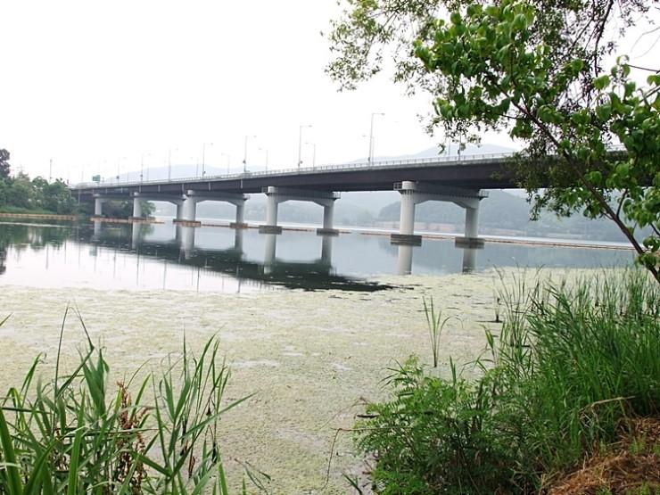 강가에 세워진 다리의 모습