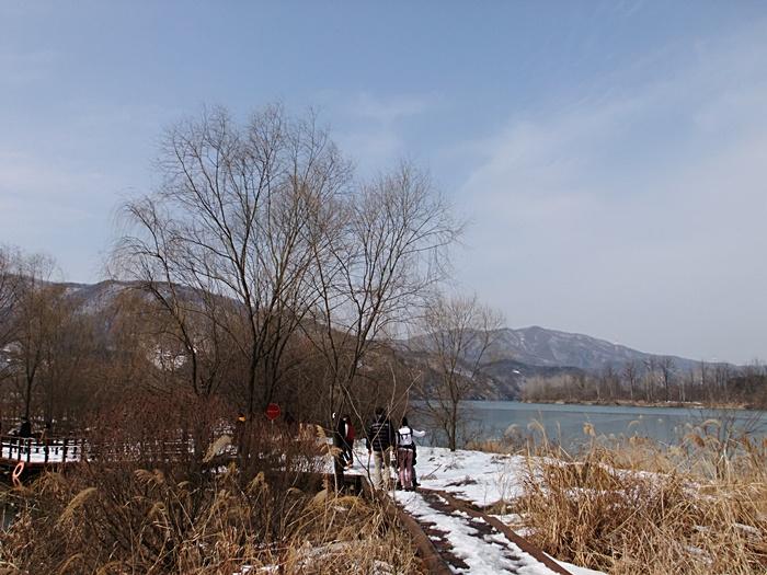 갈대와 앙상한 나무 너무로 보이는 강과 산의 모습