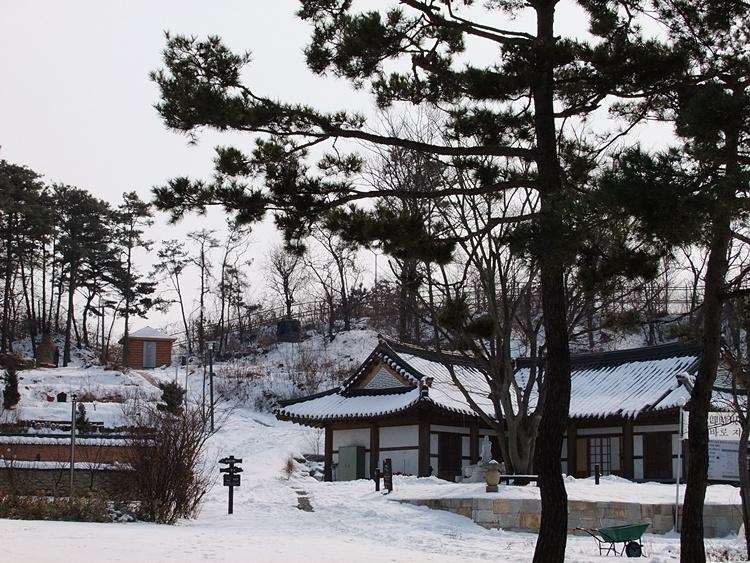 나무들과 눈으로 뒤덮힌 사찰의 모습