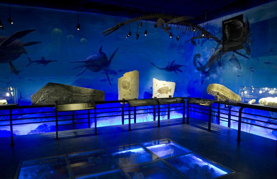 심해를 연상시키는 공간에 화석들이 전시되어 있는 모습