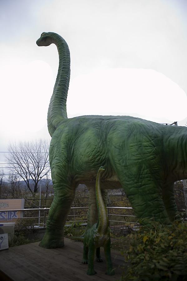 목이 길다란 공룡 모형의 모습