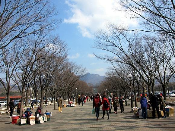 서울대공원으로 가는 길