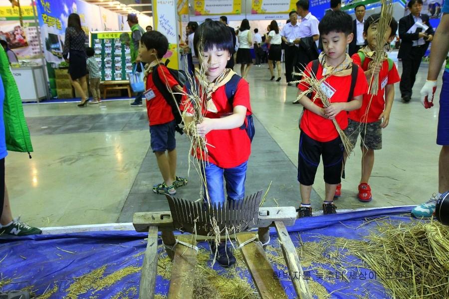벼에 있는 알곡을 털어내는 체험을 하는 아이들의 모습