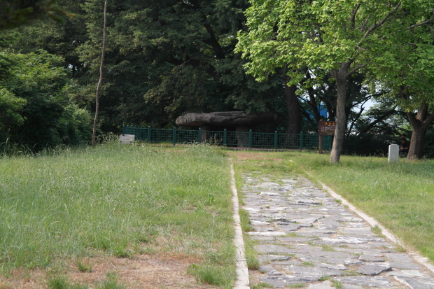 수풀사이에 자리한 고인돌의 모습