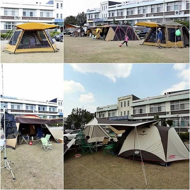 청소년수련관 앞의 잔디밭에 세워져 있는 다양한 텐트의 모습