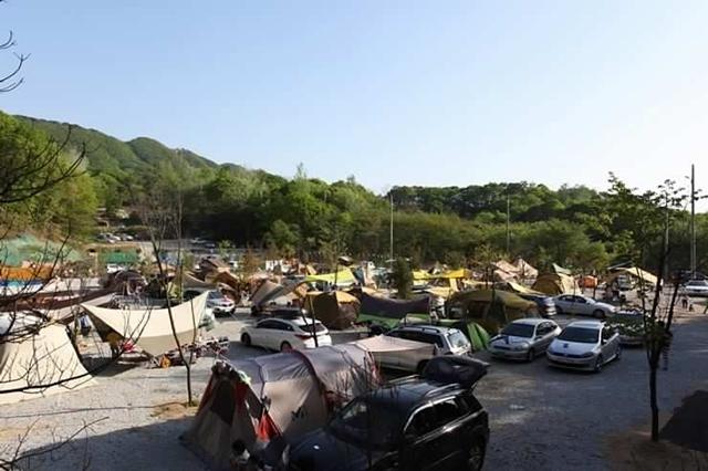캠핑장에 쳐져 있는 많은 텐트의 모습