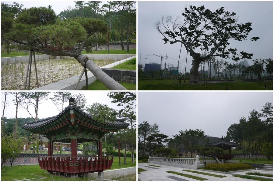 공원주변에 있는 나부들과 정자의 모습