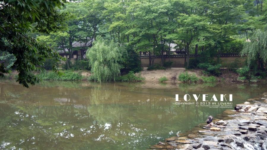 수목으로 둘러싸인 연못의 모습