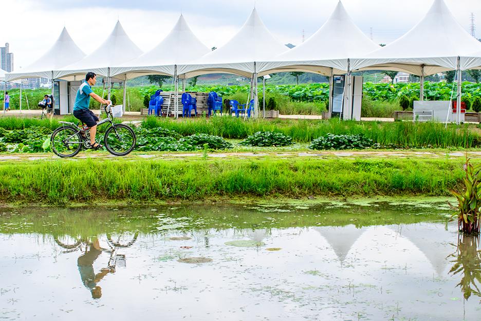 연못 옆으로 자전거를 타는 사람의 모습
