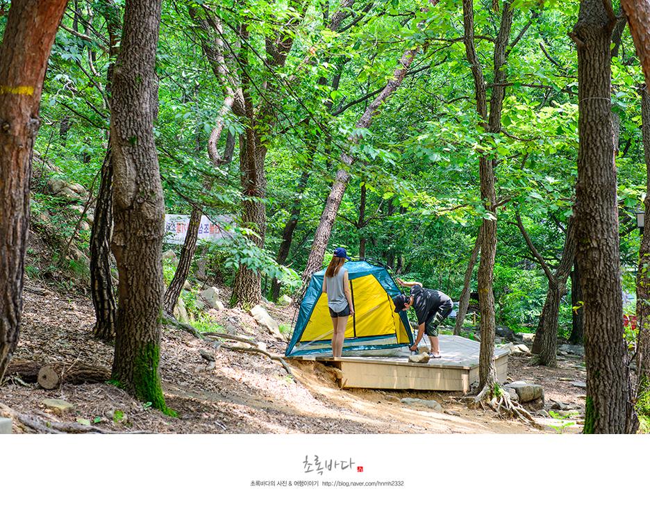 예술공원에 마련된 캠핑 데크위에 텐트를 설치하는 모습