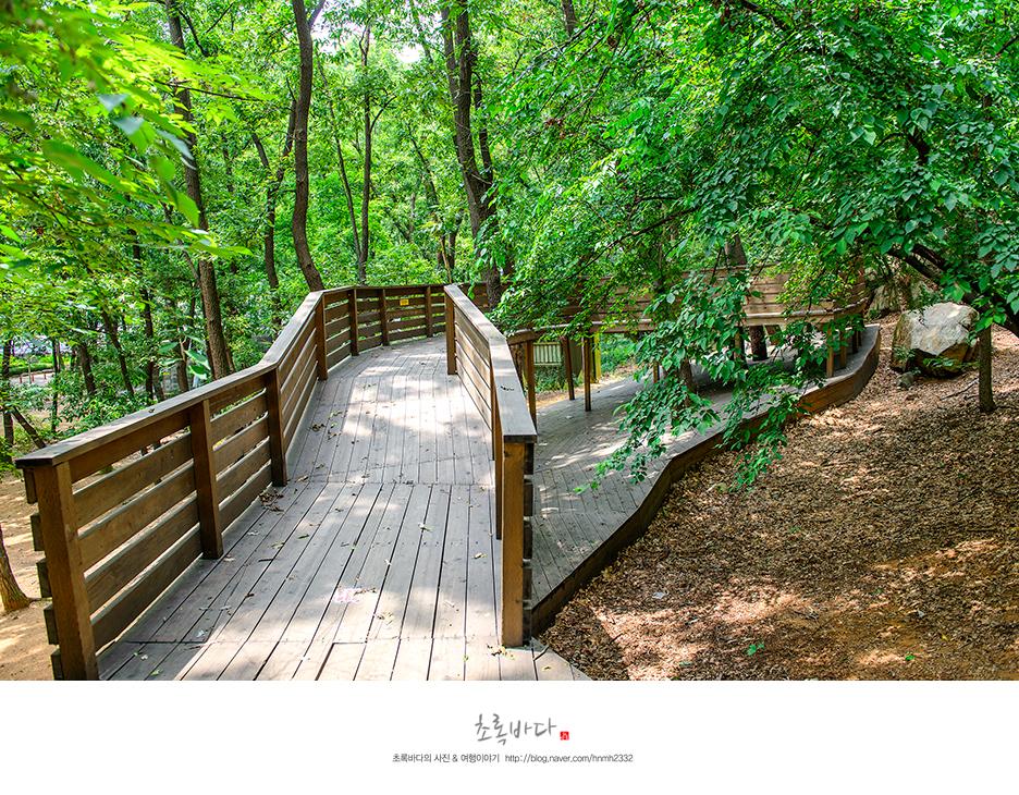 안양예술공원에 있는 등산로의 모습