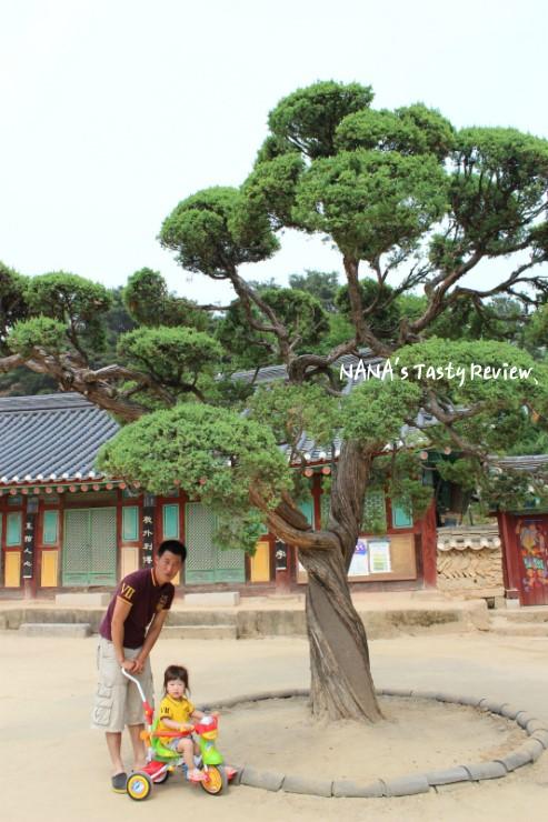 나무 앞에서 포즈는 취하는 아빠와 딸