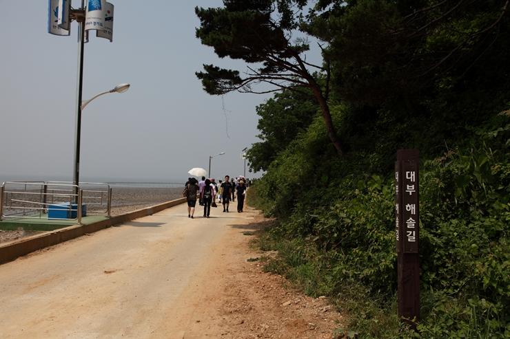 대부해솔길과 이어져 있는 산책로의 모습
