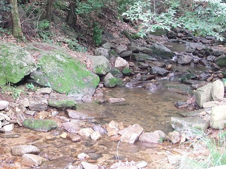 서운산 계곡의 모습