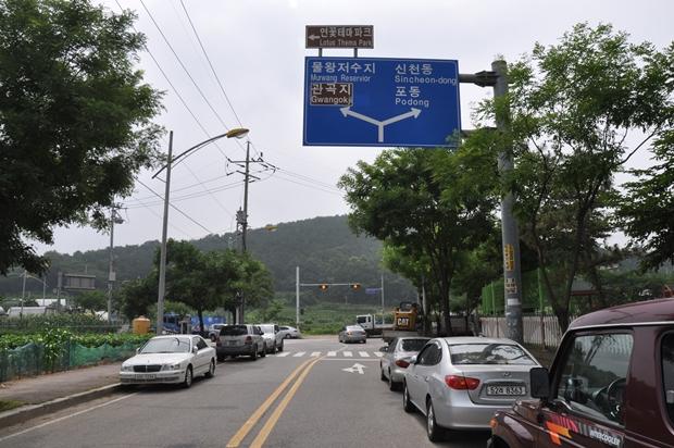연꽃테마파크 가는 도로의 모습