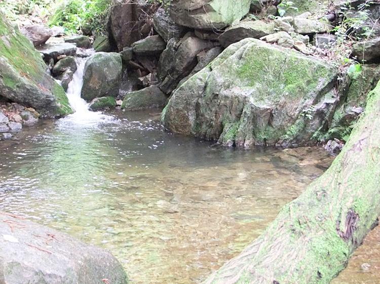석남새 내 위치한 계곡의 모습