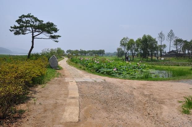 길가옆에 있는 연못의 모습