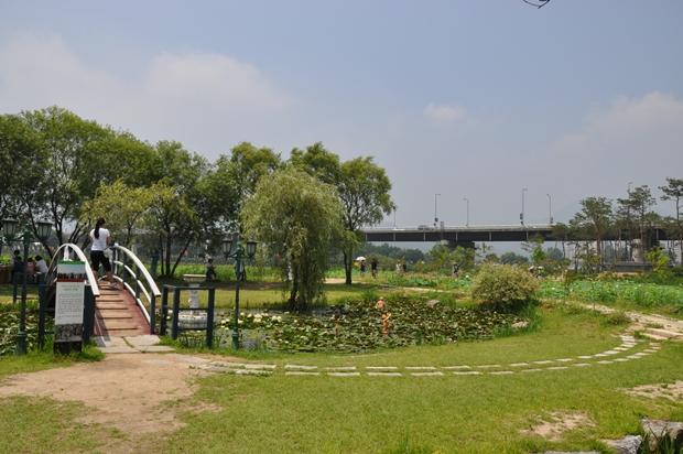모네의 정원 모습
