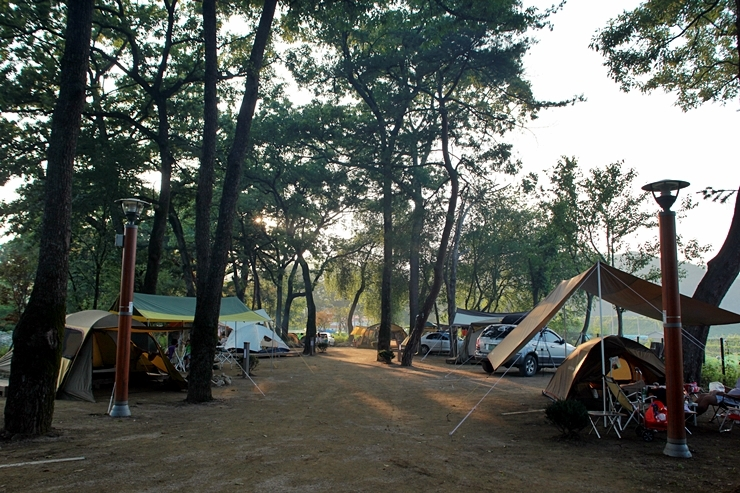 캠핑장에서 찍은 아침 풍경의 모습