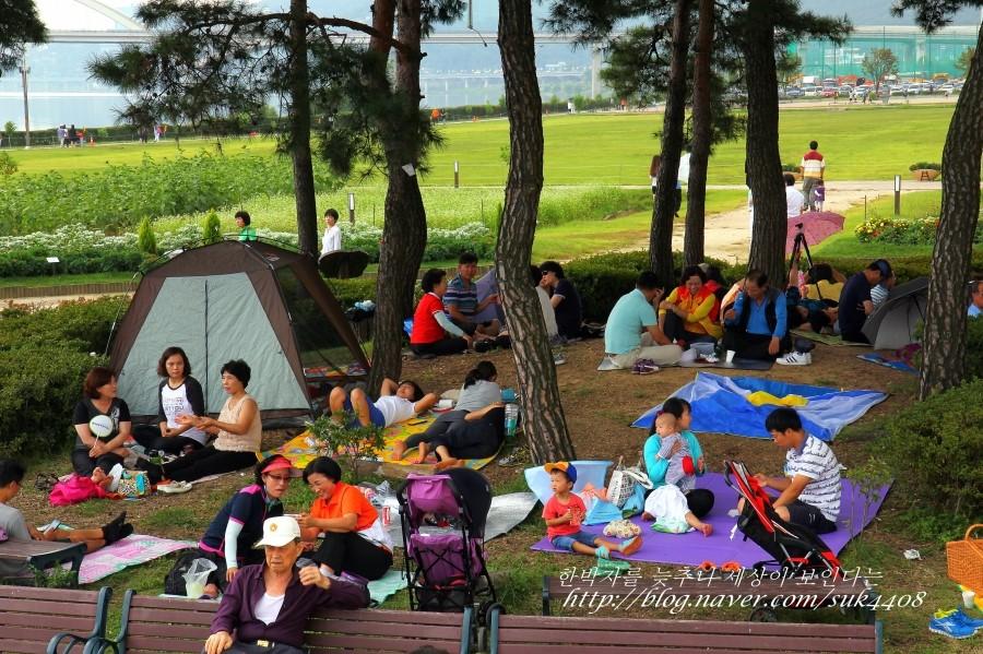 텐트를 치거나 돗자리를 피고 자리를 잡은 사람들