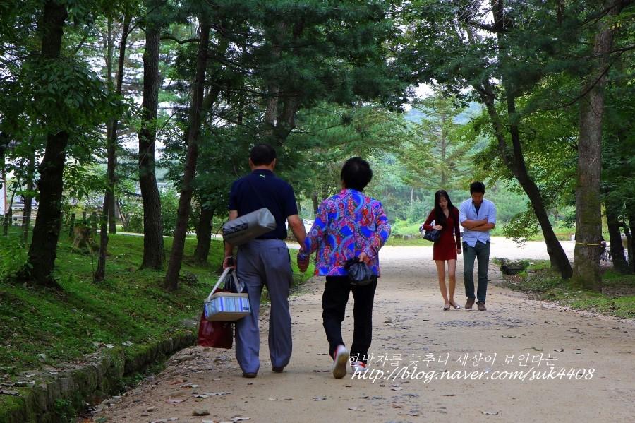 길을 걷는 사람들