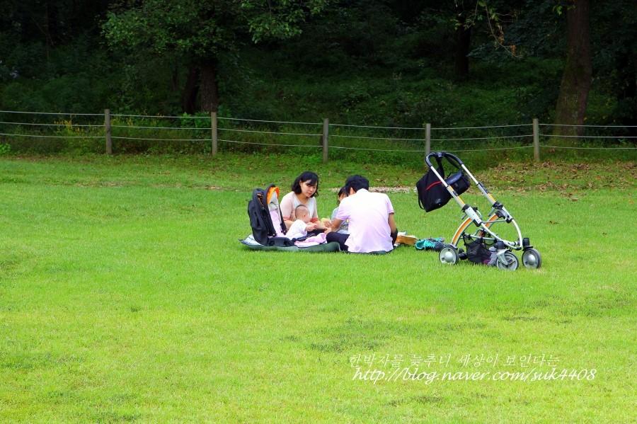 잔디 위에서 돗자리를 피고 앉은 가족