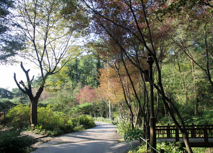 단풍이 물들고 있는 한택식물원의 모습