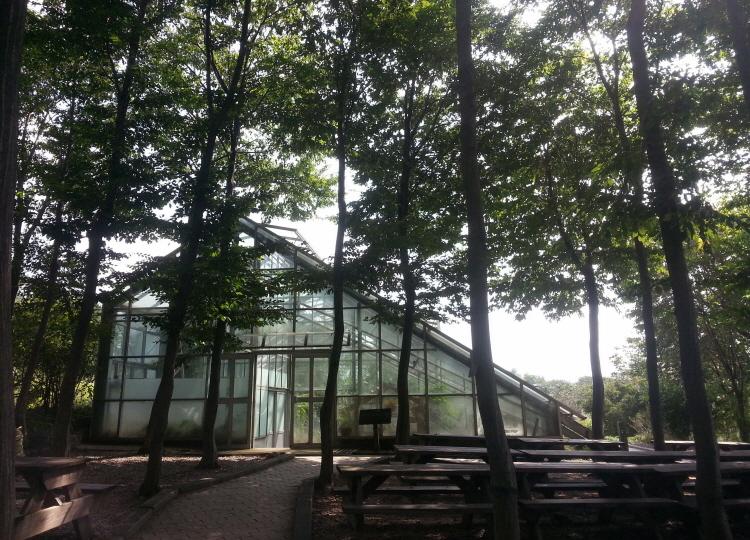 한택 식물원내에 있는 허브, 식충식물온실