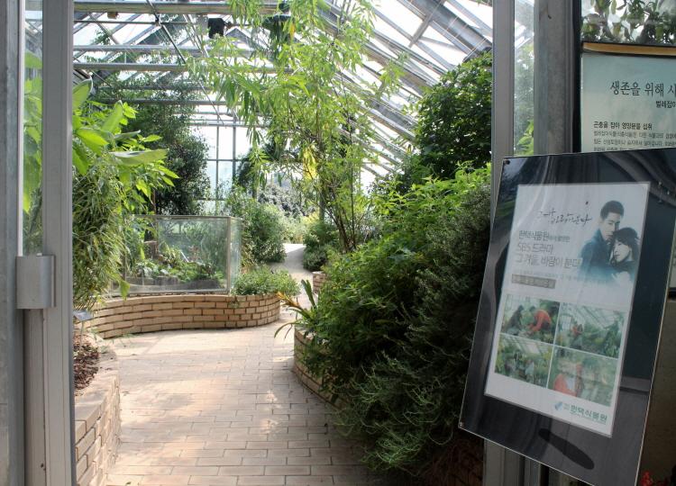 허브, 식충식물 온실 내부의 모습