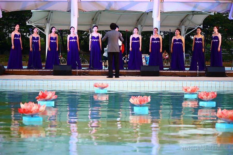 수영장에 연꽃을 띄우고 그 옆에서 노래하는 사람들