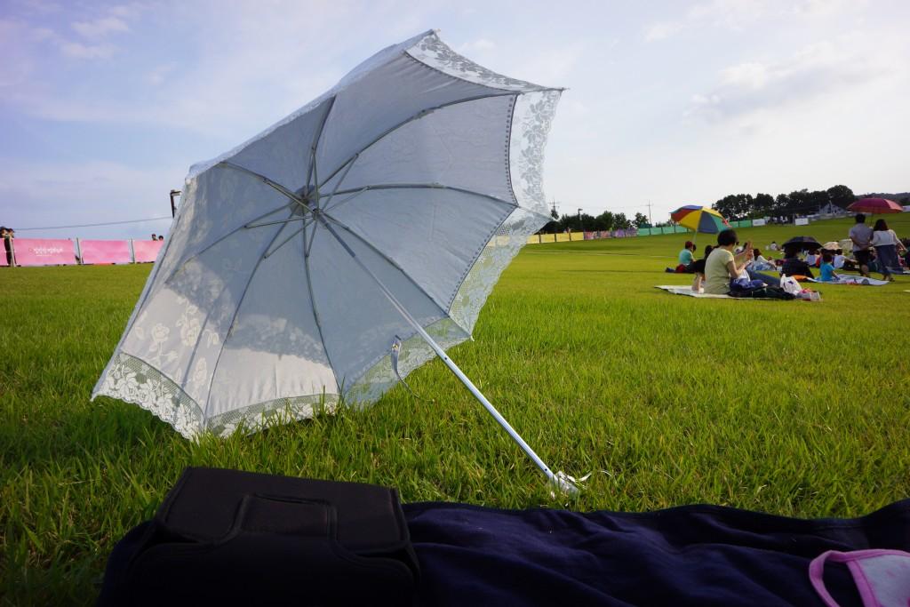 잔디밭에 세워져 있는 우산의 모습