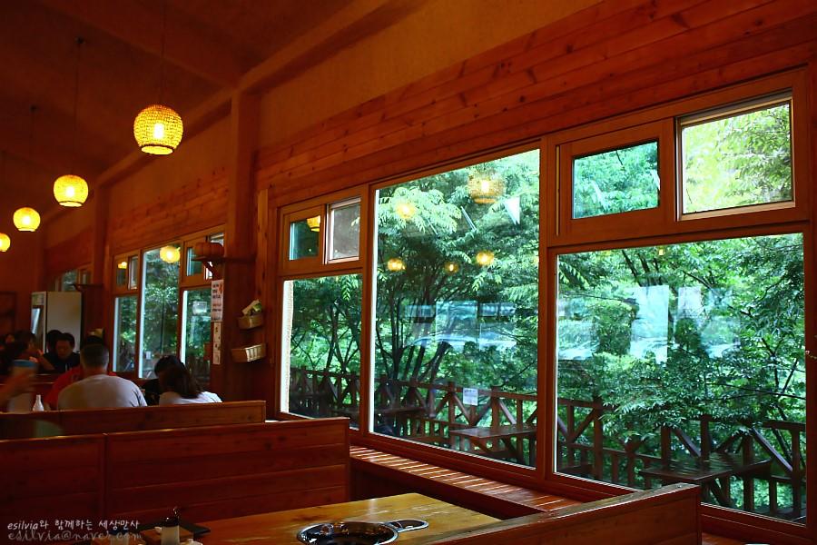 창문 밖으로 보이는 푸른 나무들