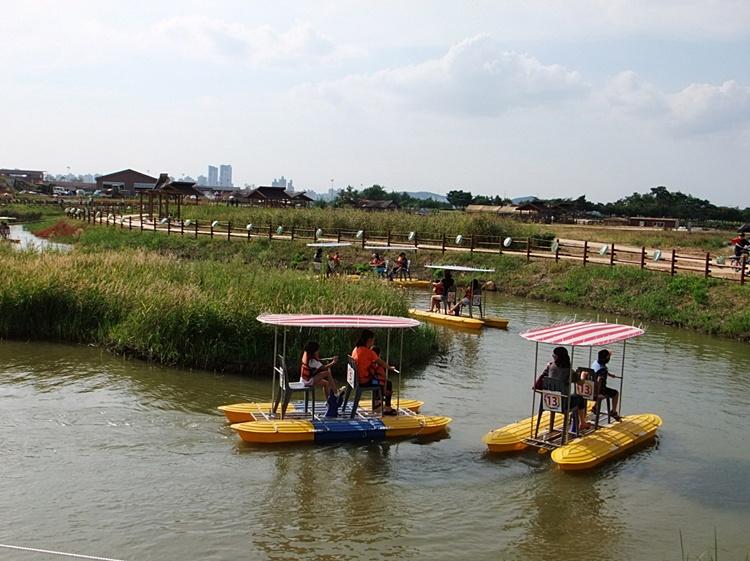 연못에서 수상자전거를 타고 있는 모습