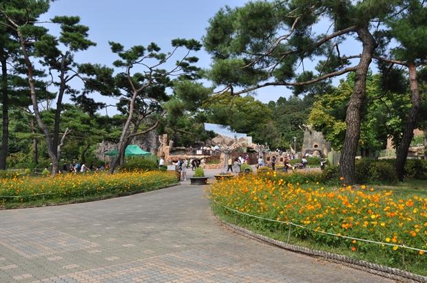 꽃이 피어있는 과천동물원