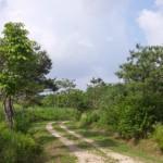 고양생태공원1