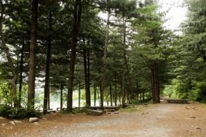 유명산자연휴양림3
