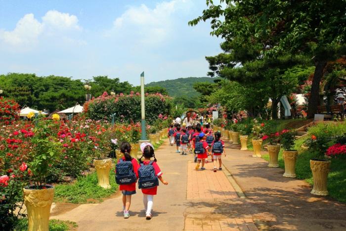 경기끼투어서울 대공원 장미원 460