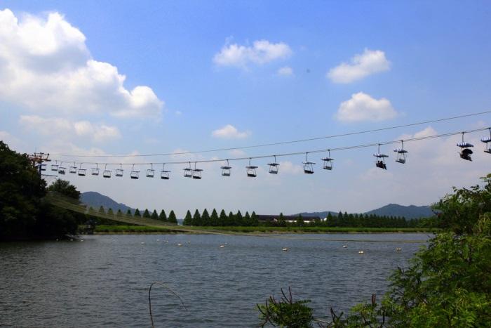 경기끼투어서울 대공원 장미원 674