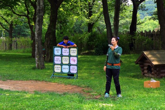 경기끼투어서울 대공원 장미원 763