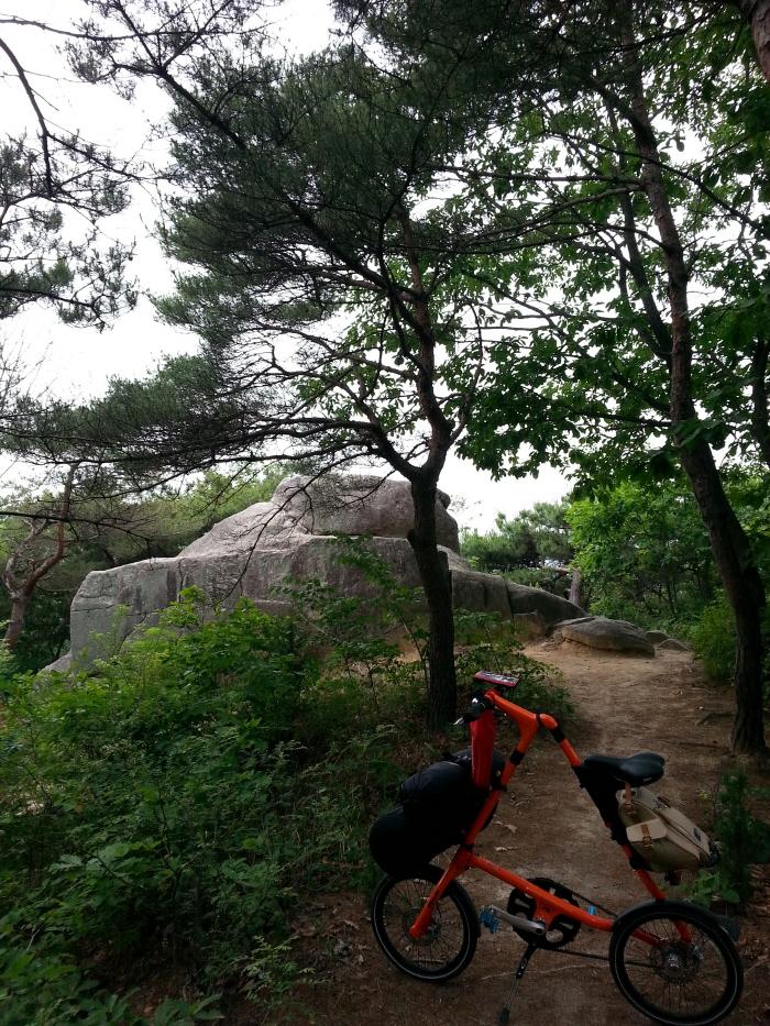 황학산 산림욕장